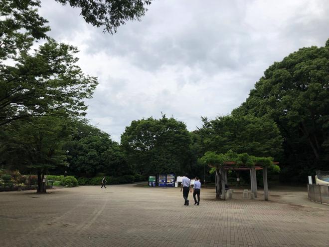 ウーバーイーツ 早稲田 都立戸山公園